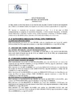 ACTA Nº 33 (18-19)