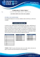 DIVISIÓN HONRA CADETE MASCULINA BASES COMPETICIÓN TEMP. 2020-21
