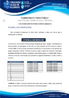 DIVISIÓN HONRA XUVENIL FEMININA BASES COMPETICIÓN TEMP. 2020-21