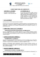 ACTA-Nº-10-TEMP-20-21