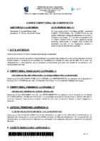 ACTA Nº 11 TEMP 20-21