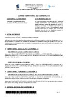ACTA Nº 12 TEMP 20-21