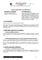 ACTA Nº 13 TEMP 20-21