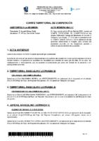 ACTA Nº 17 TEMP 20-21