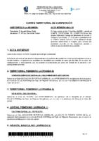 ACTA Nº 19 TEMP 20-21